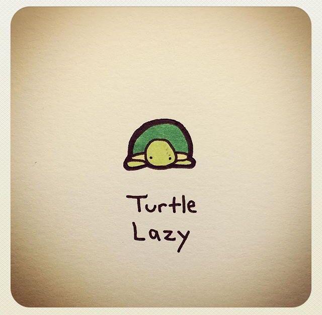 Turtle Lazy