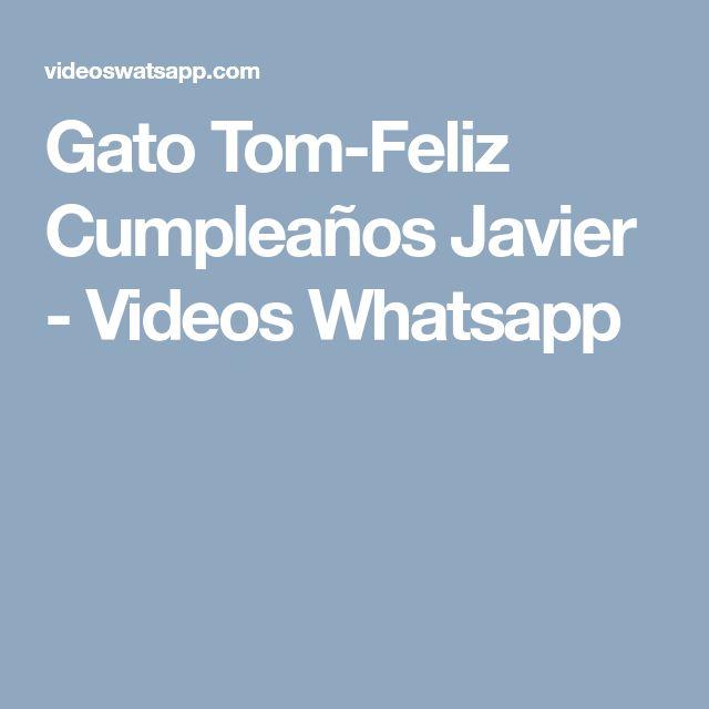 Gato Tom-Feliz Cumpleaños Javier - Videos Whatsapp