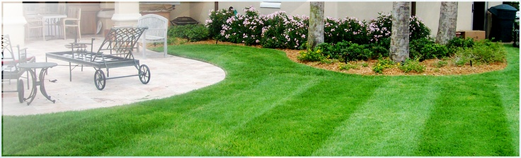Sergio's Landscaping has extensive experience in all aspects of landscaping. Our maintenance specialists provide our clients with only the highest and safest standards of services. We aim to enhance your outdoor space and complement your home or office area.