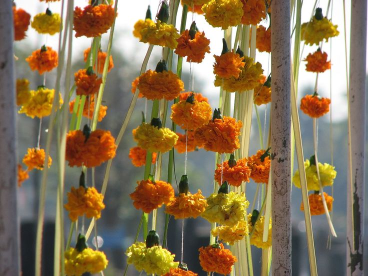 Make these flower garlands with marigold heads threaded onto string and ribbon.