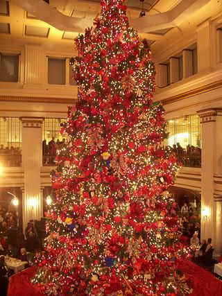 Tree Chicago Marshall Fields Illinois