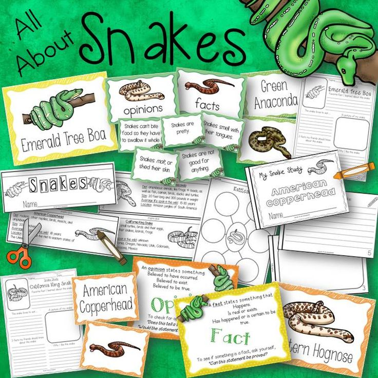 All About Snakes! {Activities, Posters, Books, and Fact and Opinion Cards}