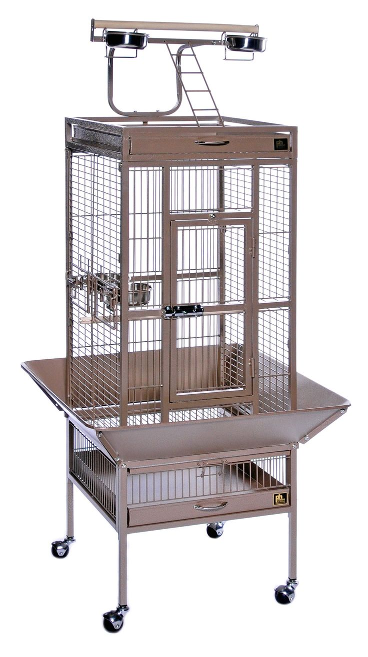 best cockatiel cage