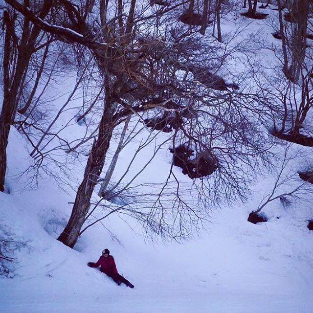 【miz_miz_ada】さんのInstagramをピンしています。 《Biwako valley, Shiga , Japan . . .  #mountain #forest#snow#ice#ski#snowboarding #trees#nature #natural #naturelovers #discoverjapan #lovejapan #lovenature #outdoor#ディスカバージャパン #アウトドア #木 #森 #山 #雪#スノーボード#スキー場#スキー#自然#琵琶湖バレイ》