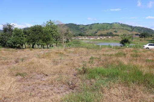 #Lote en #venta en #SanCarlitos vista al lago y accesible. #David, #Chiriquí Affordable #lot for #sale in #SanCarlitos with view to the lake. #David, #Chiriqui
