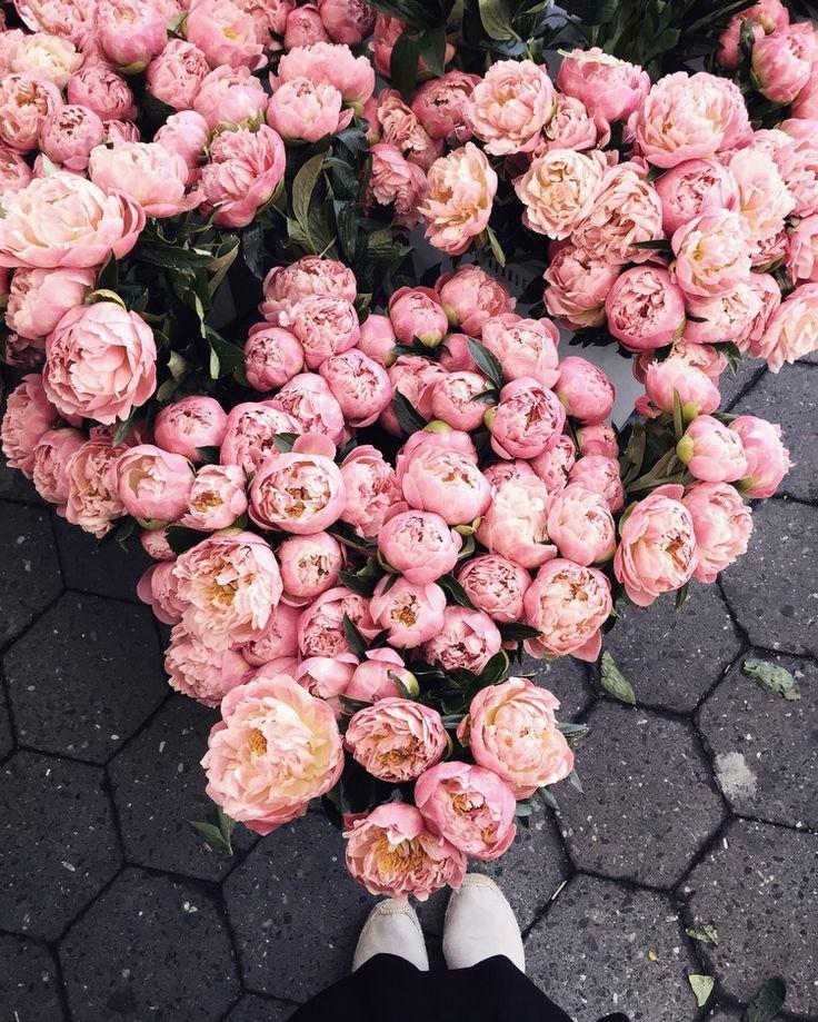 4 Ways to Practice Gratitude Right Now — LIVING MINNALY Luxury Flowers, Peonies Garden, No Rain, Practice Gratitude, Flower Aesthetic, Simply Beautiful, Garden Landscaping, Flower Power, Planting Flowers