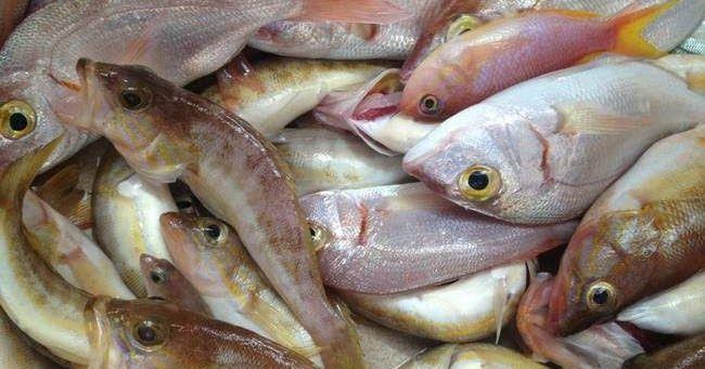 Απίθανο κόλπο: Φτιάξτε την τέλεια... παγίδα για ψάρια σε 30 δευτερόλεπτα