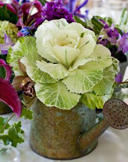 LOVE the look of this centerpiece. Simple cabbage and one white rose in a vintage watering can!