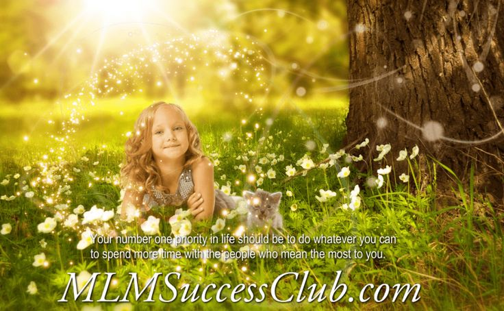 MLM Success Club - Spend More Time with your Family