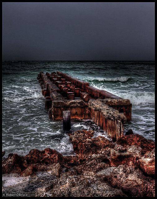 334 best sarasota images on pinterest sarasota florida for Sarasota fishing pier