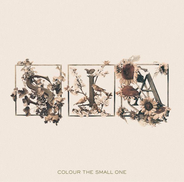 Best 25+ Songs by sia ideas on Pinterest | Sia lyrics, Maddie b ...