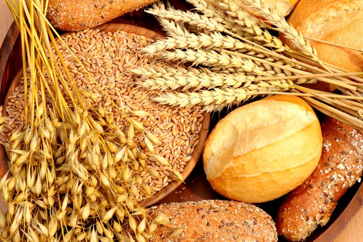 What's wrong with eating grains?Carb Recipe, 10 000 Years, Agriculture Revolutions, Healthy Eating, Paleo, Healthy Options, American Culture, Eating Grains, Eating Healthy