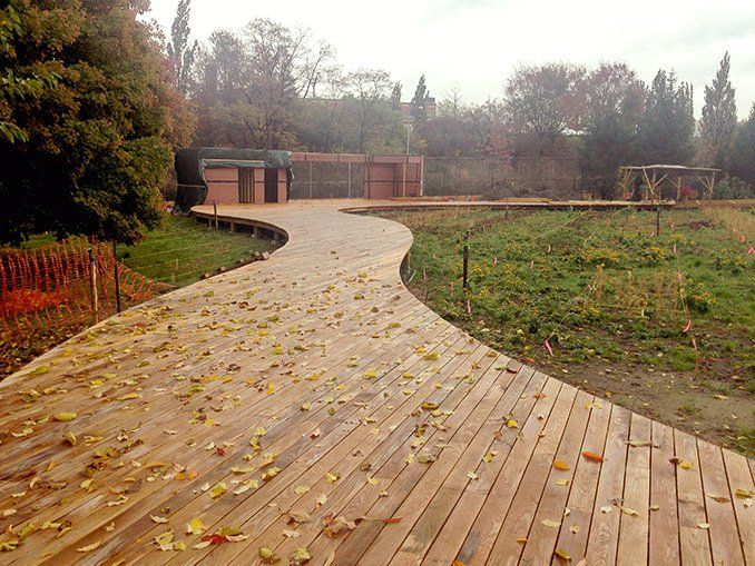 Brooklyn Naval Cemetery Landscape by Nelson Byrd Woltz Landscape Architects #USA #cemetery #landscape #perennials #landscapearchitecture #timber #wood #walkway #boardwalk
