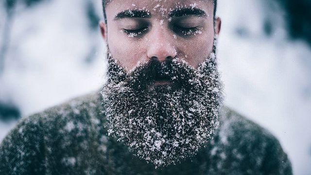 """thelastofthewine: """"elephantguncollective: """" Winter by michaelfaerberphotography on Flickr. """" """""""
