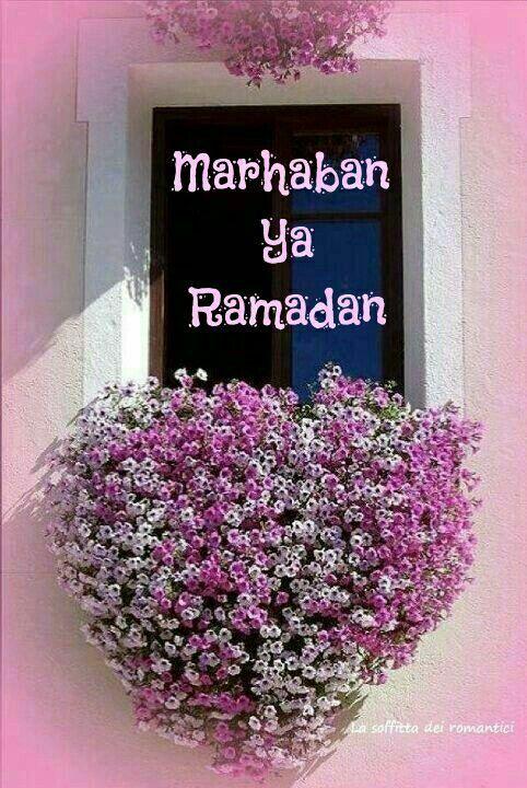 Bismillah. Selamat berpuasa kepada semua muslimin dan muslimat.