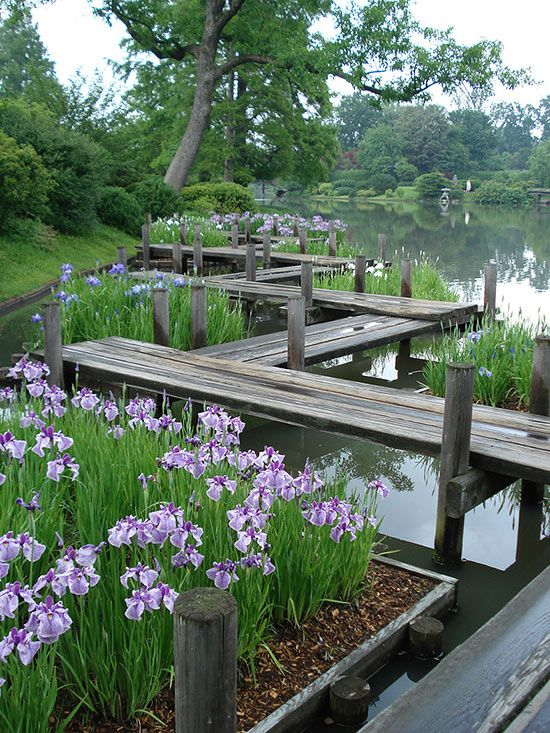 Landscaping Ideas From The Missouri Botanic Garden