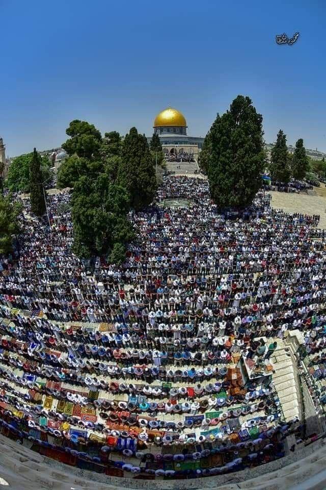 هكذا بدا المسجد الأقصى المبارك في ثاني جمعة من رمضان المبارك Photo Dolores Park Park