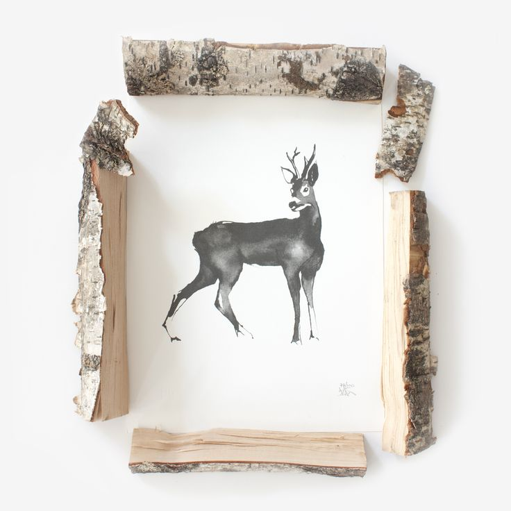 Roe Deer & Birch Logs Teemu Järvi Illustrations http://www.teemujarvi.com/en/shop/paper-prints/59-deer.html