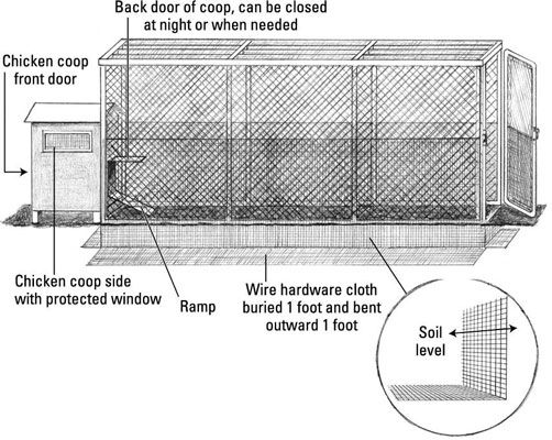 Building a chicken coop for dummies woodworking projects