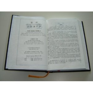 Taiwanese Bible / Taiwanese Han Character Edition / Beautiful Large TH63    $85.99