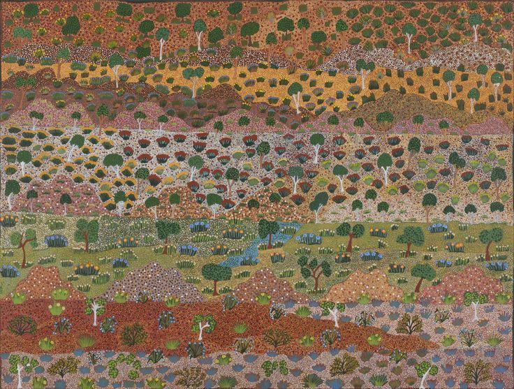 Bush medicine plants | NTG | 29 Telstra National Aboriginal & Torres Strait Islander Art Award - Julianne Morton
