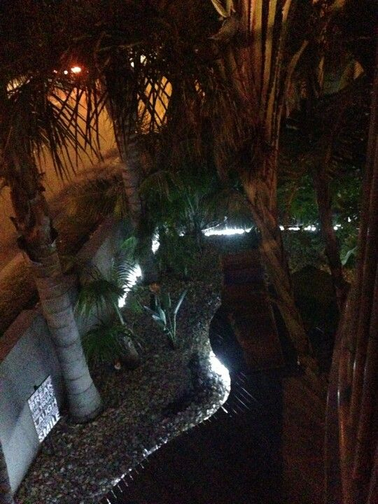 Night light in the courtyard