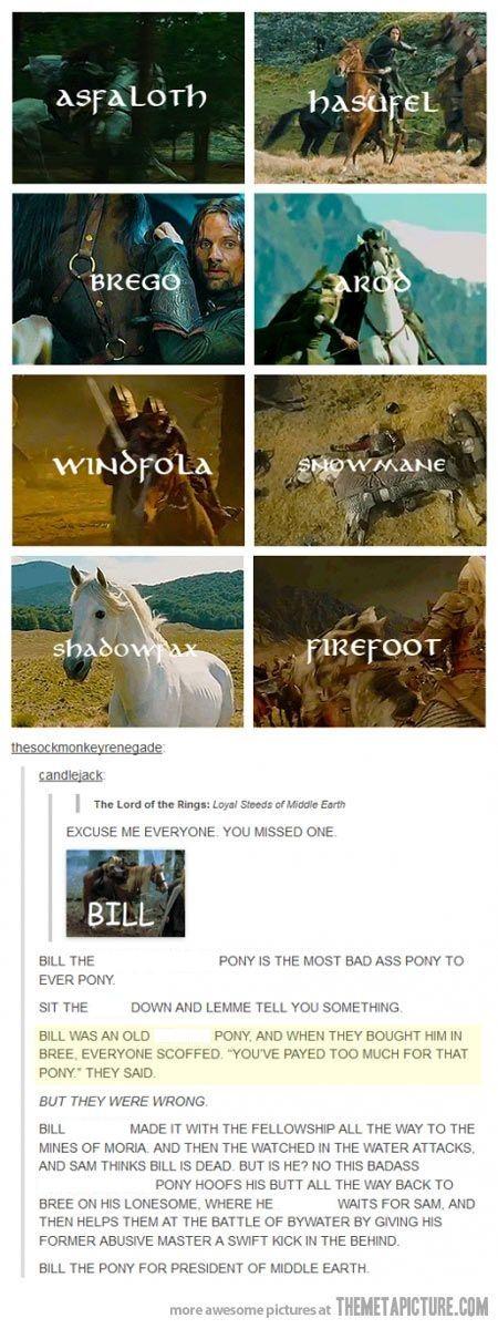 Alle Pferde aus Mittelerde