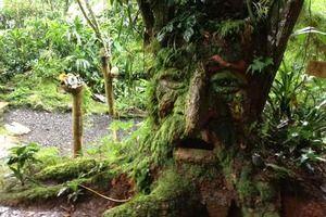 Bichacue Yath Arte & Naturaleza in Cali, Colombia