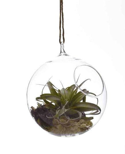 Large Hanging Bubble Terrarium/Candleholder
