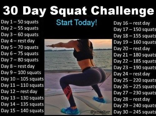 Motivation For Fitness: 30Day, Squats Challenges, Jenselter, Butts, Motivation, Jen Shelter, 30 Day Squats, Health Fit, Healthy Living