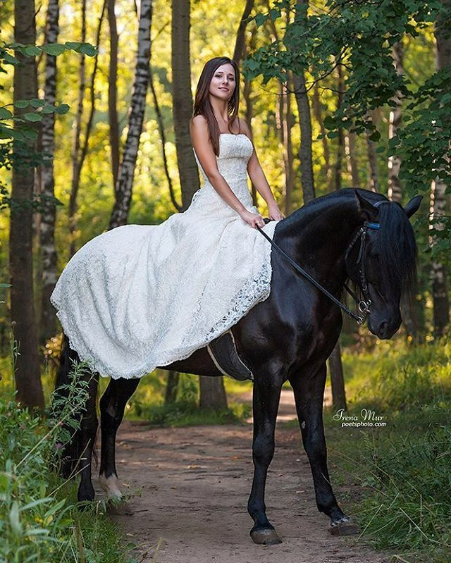 Instagram media by poetsphoto - #poetsphoto #black #blackhorse #lovehorses #horse #bestofequines #horsesofinstagram #instahorse #equine #equestrian #nikon #wedding #dress #weddingdress #woman #lady #girl #horsegirl #beauty #лошадь #конь #Москва #черный  #вороной #платье #свадьба #невеста