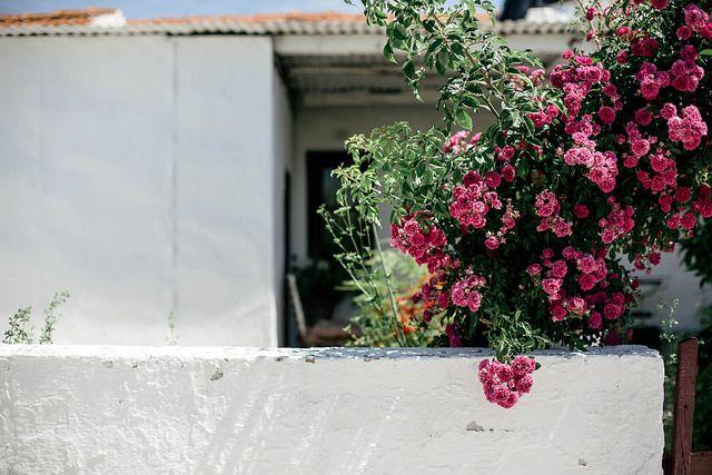 Santa Susana by Beth Kirby | {local milk}, via Flickr