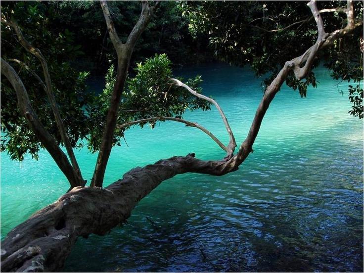 Laguna de catazaja