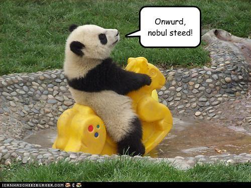 onward, noble steed!