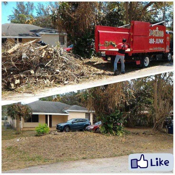 Chapter 1: Are you looking for Professional Yard Waste Removal Service in Miami South?  Chapter 2: Our Expierenced Debris Removal Team will haul off any types of yard! by junk.king.miami.south