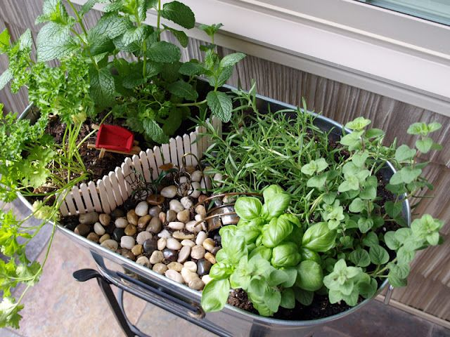 The most DARLING miniature herb garden in the world!!! So cute I want to make one exactly like it!!!! love love love!