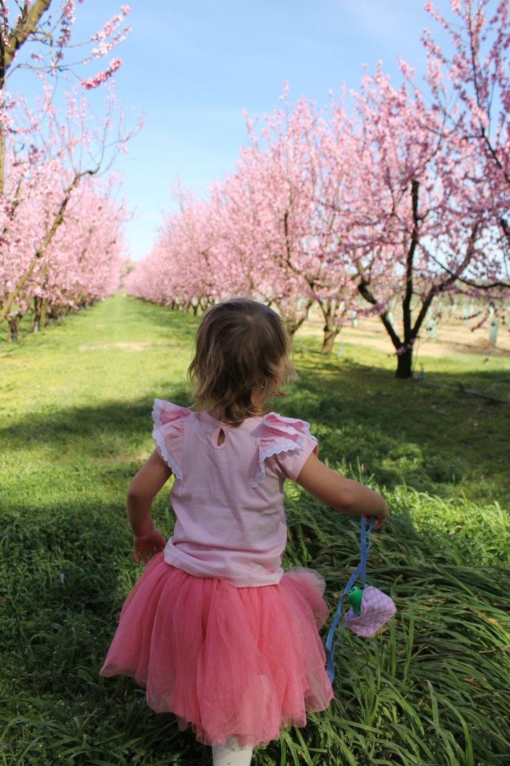 Oobi Flutter Tee and Saskia Skirt. My Oobi girl in the orchard full of spring blossoms. #OobiBaby