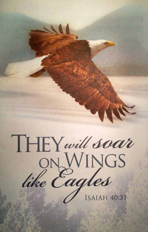 Eagles' Wings International Ministries - Home | Facebook