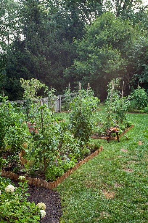 220 best Kitchen Garden images on Pinterest   Gardening, Potager ...