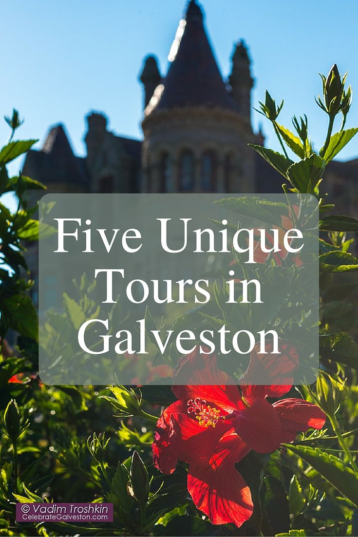 Five Unique Tours that you can only do in Galveston, Texas.