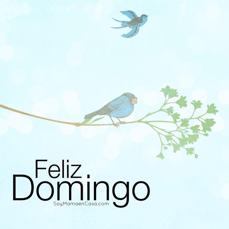 Hola feliz #Domingo  http://soymamaencasa.com