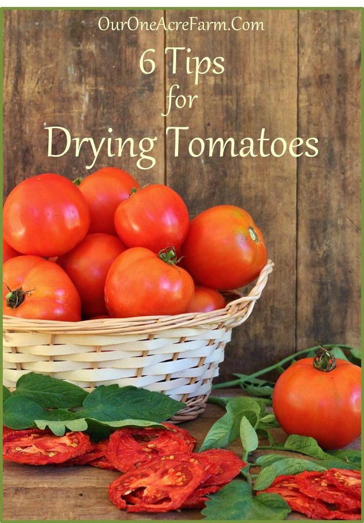6 Tips for Drying Tomatoes - Great tips to help maintain nutritional value, and preserve them safely and efficiently.