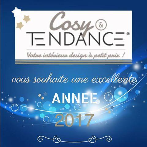 Cosy & Tendance vous souhaite une excellente année 2017, faites le plein d'inspirations design mobilier pour ravir vos intérieurs, de belles surprises vous attendent en 2017 ! #promotions    http://www.cosy-tendance.com  https://www.facebook.com/Cosy-Tendance-Inspiration-d%C3%A9co-design-142221732930786/  https://www.facebook.com/cosytendancemobilier/photos/a.147820932370866.1073741829.142221732930786/153483005137992/?type=3&theater    #design #happynewyear #mobilier #promotions #tendance…