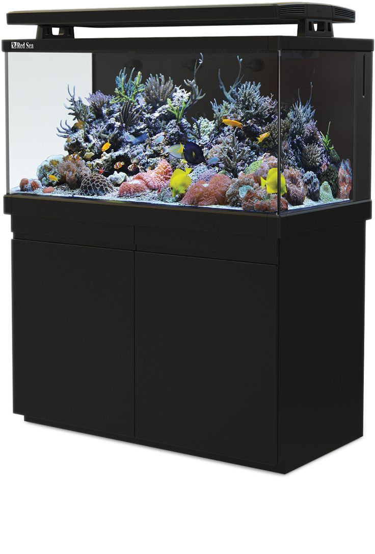 Aquarium fish tank complete system - Red Sea Max S 500 Complete Plug Play Coral Reef Aquarium System