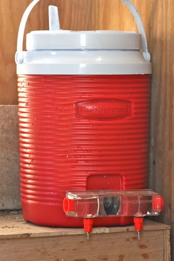 I so want a Brite Tap Chicken Waterer. Perhaps the insulated water cooler will help keep not only cool during the summer but warm (aka not frozen solid) during the winter?