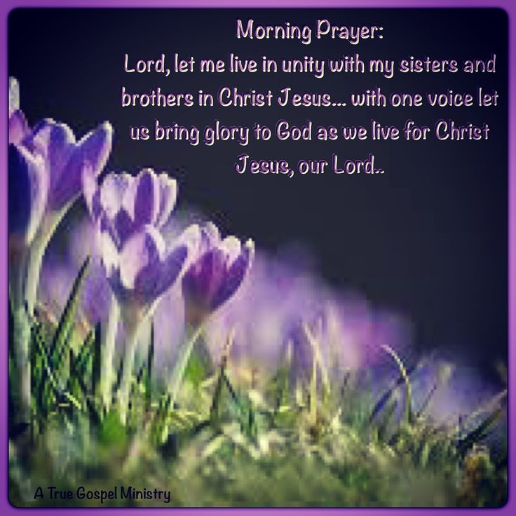 Prayer For My Sister Quotes: Morning Prayer: Lord, Let Me Live In Unity With My Sisters
