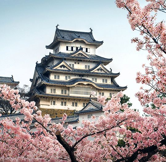 Himeji Castle, about 70 miles west of Kyoto, dating from the 14th century. Sometimes called the White Heron Castle. one of the few Japanese castles to survive virtually intact to the present day.