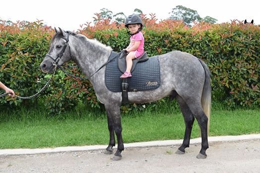 Thank you to Niki and Shane Rose, one of our long term Bates Saddles advocates in Australia; for sending us this gorgeous photo of their daughter Olivia looking very happy on her pony!   We think the Bates Saddles cloth really suits this little advocate-in-training and are looking forward to watching her grow and learn alongside her very talented mum and dad.
