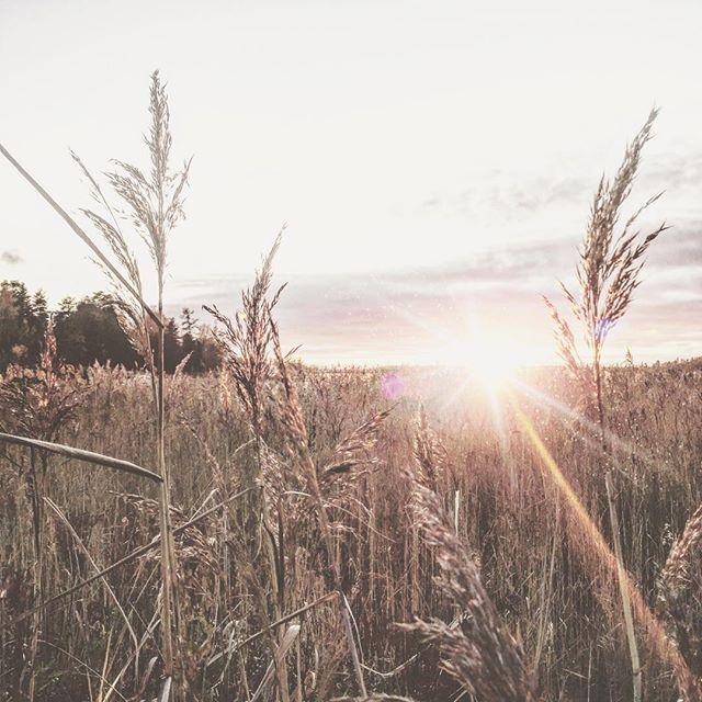 Beautiful November <3