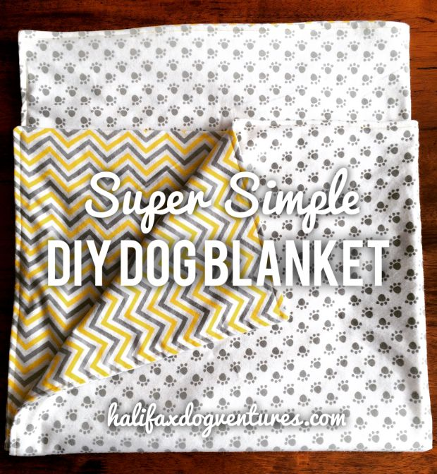 Super Simple DIY Dog Blanket. Your dog will love this cuddly, reversible and easy-to-make blanket. Great for the car, crate or couch. halifaxdogventures.com/blog